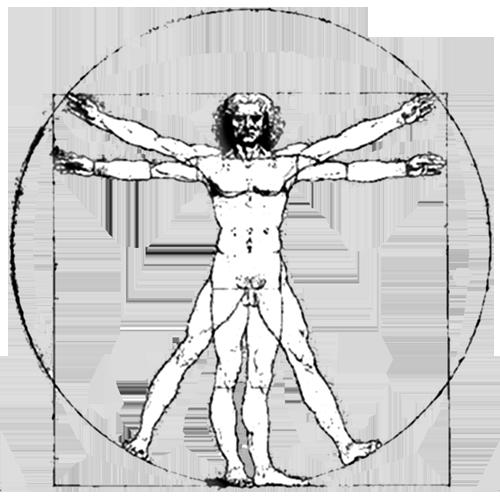 Contour Line Drawing Leonardo Da Vinci : Interdisciplinary engineering arts sciences at lehigh